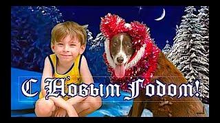 С Новым годом! 🐾  С Годом Желтой Земляной Собаки/ Поздравление 2018! 🐾  🐾  🐾