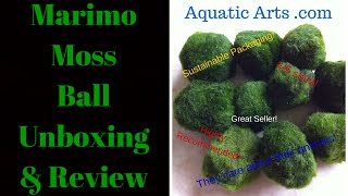 Video Marimo Moss Ball Unboxing (Aquatic Arts) & Review download MP3, 3GP, MP4, WEBM, AVI, FLV Oktober 2018