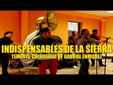 Indispesables De La Sierra - En Vivo Desde Temoris, Chihuahua [Fiesta Privada] [Disco Completo]