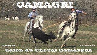 CAMAGRI-Salon du Cheval Camargue-16/02/2019