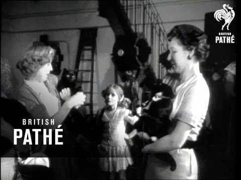 Black Cats (1953)