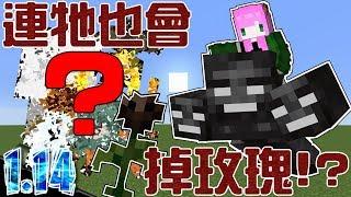 【Minecraft1.14】連「牠」也會掉落凋零玫瑰!?玫瑰獲取方法大公開!【禾卯▸我的世界▸18w44a】
