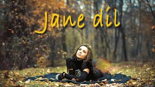 Jane Dil | Best Hindi Songs Mp3 Song Download | Original Song Download Mp3| Mp3 Skulls | Mp3 Skulls