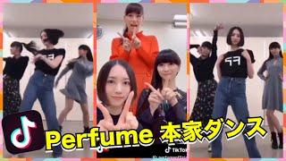 TikTok #Perfume #ティックトック 今、人気急上昇!話題のtiktoker、ク...
