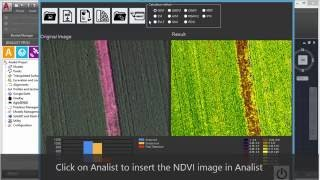 Analist - Calculate NDVI with AgroSENSE for Agrowing sensor