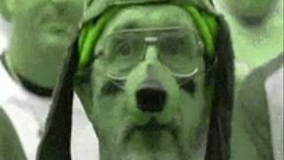 Misc Mudkips - Boadicea (Enya Remix)
