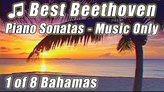 BEETHOVEN 1. Piano Sonata Pastoral Moonlight Sonata Classical Music for Studying Study Instrumental