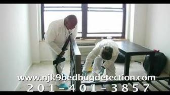Bedbug Treatment Preparation
