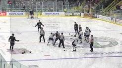 Minor league hockey fight