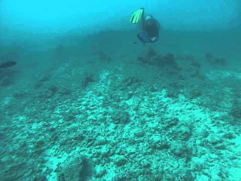 40 ft Scuba dive