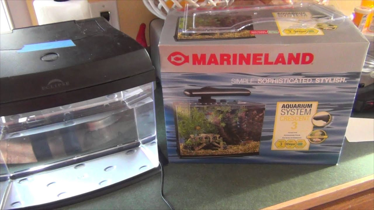 Marineland fish aquarium with eclipse hood review youtube for Eclipse fish tank