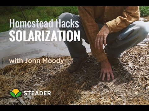 Homestead HACK: Soil Solarization