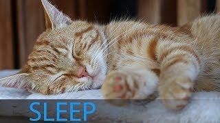 8 Hour Sleeping Music: Music Meditation, Delta Waves, Deep Sleep Music, Relaxing Music ☯1723