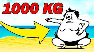 NAJGRUBSZY KOT NA ŚWIECIE 1000KG ! | THE BATTLE CATS #admiros