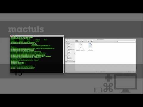 Navigating the Terminal: A Gentle Introduction
