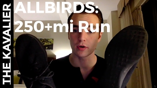 250 Miles Run with the Allbirds Wool Runners - In Depth Review
