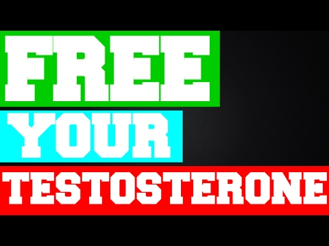 WHY 98% OF YOUR TESTOSTERONE IS USELESS !!! ● SHBG ●