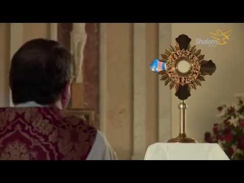 Eucharistic Adoration: St. Joseph Catholic Church