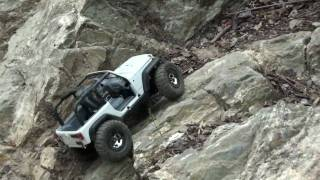 Jeep JK rubicon 3 rc micro losi