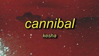 Kesha - Cannibal (Lyrics) | whenever you tell me i'm pretty
