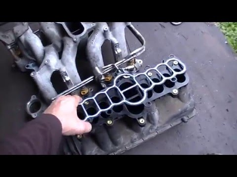 Ford    Expedition 2000    4   6 Intake gasket update    Triton