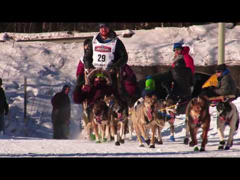 2017 Iditarod Dogsled Race Video Dallas Seavey Winner