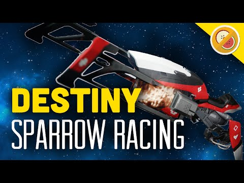 Destiny Sparrow Racing : Everything You Need To Know (Funny Gaming Moments)