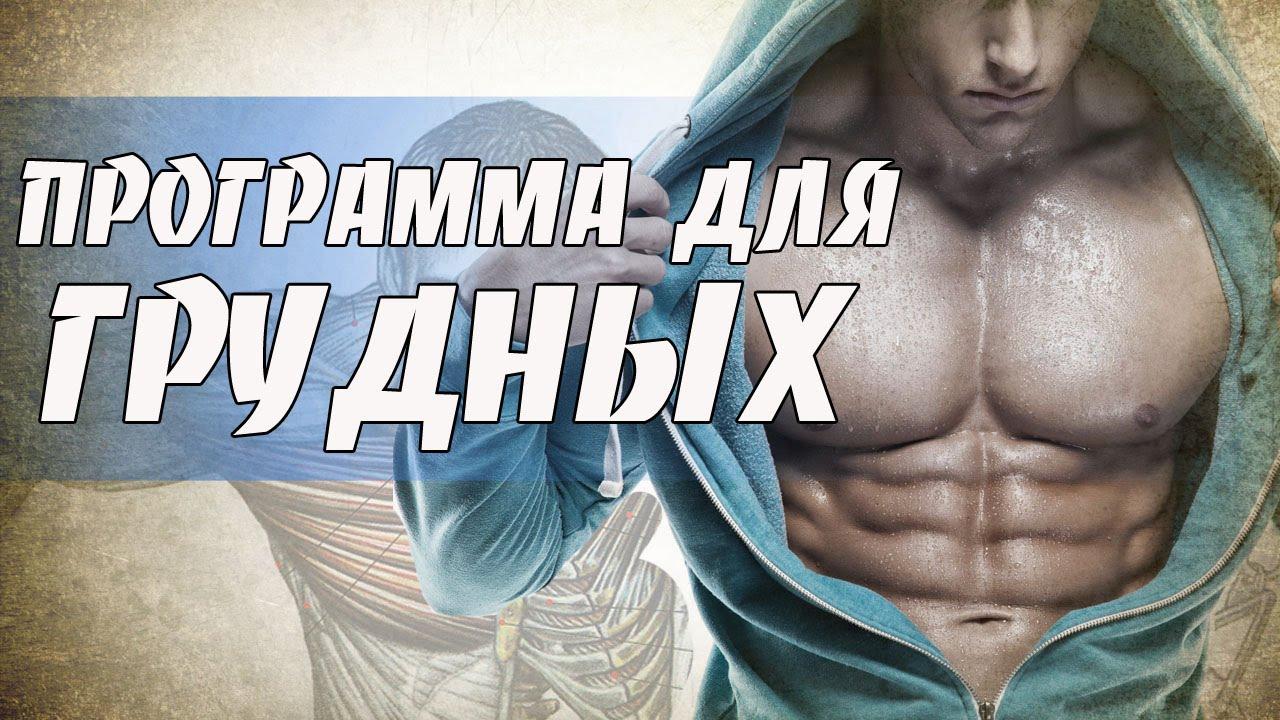 Как накачать грудные мышцы. Программа тренировок.