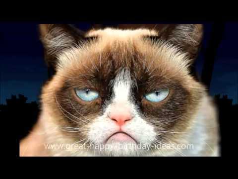 HAPPY BIRTHDAY Song for Mom Dad Kid Grumpy Cat ANIMALS (FREE ECard) Party 10 13 16 18 21 25 50 65 80