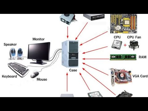 Computer Software from Sohodum New Tech