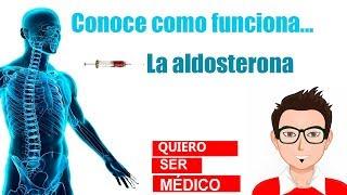 La hormona aldosterona funcion de