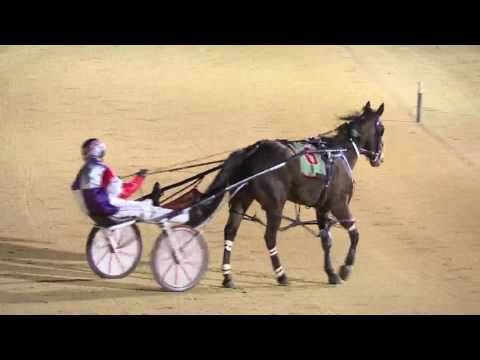 NEWCASTLE - 03/09/2016 - Race 4 - NBN TELEVISION PACE