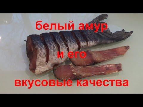 Вяленая рыба в домашних условиях.Белый амур и его вкусовые качества.