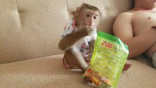 Monkey Baby Nui | The kind of candy that Nui likes to eat the most