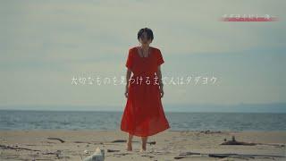 タダヨイビト海プロモーションビデオ