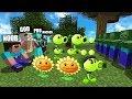 Minecraft Battle: NOOB vs PRO vs HACKER vs GOD : PLANTS VS ZOMBIE Challenge in Minecraft