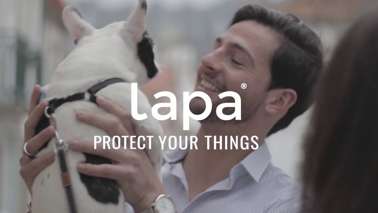 Lapa Is The Smart Pet Finder That Protects Your Best Friend Youtube