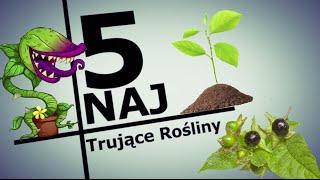 5 NAJ: Najniebezpieczniejsze rośliny