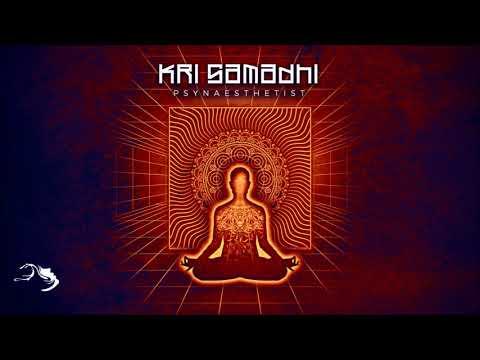 Kri Samadhi - Psynaesthetist [Full Album]
