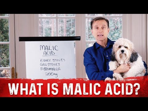 What is Malic Acid?