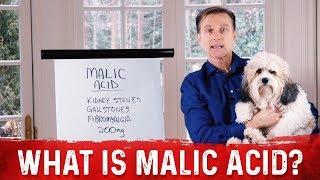 What is Malic Acid?