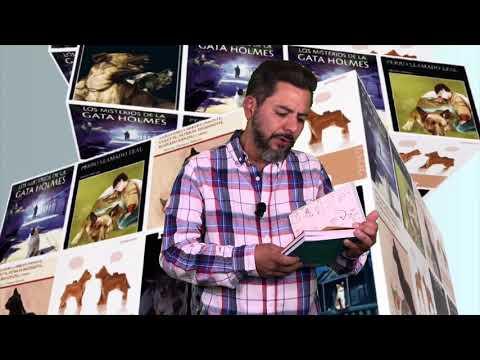 ELVIS NUNCA SE EQUIVOCA | BIBLIOTECA DE PELOS | Rodrigo Morlesey