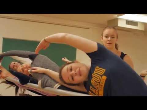 Hallmarker 2015 Thank You Video