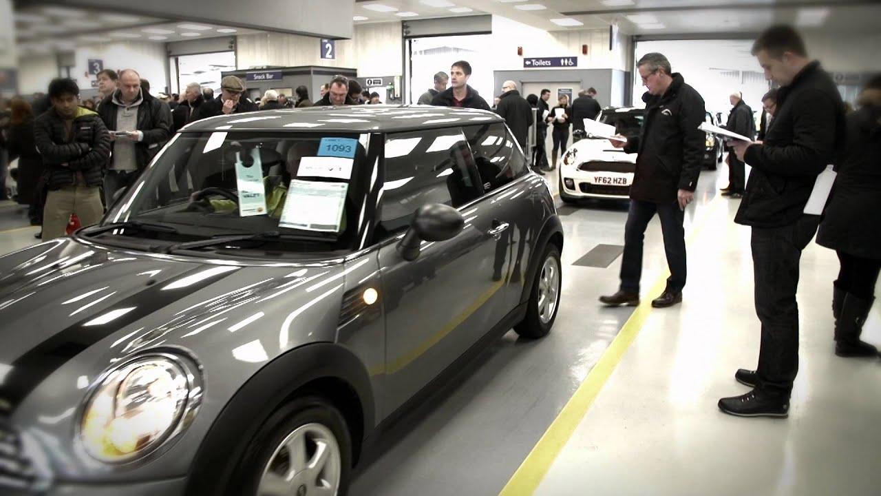 Manheim Car Auction: Manheim 1000 Car Auction
