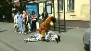 Атака клоунов  Собаки, смертельная схватка 6