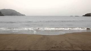 ウミガメの産卵地、「ウェルかめ」(NHK連続テレビ小説)で有名(らしい...