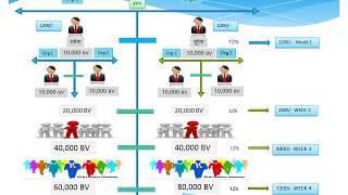 mi life style marketing pvt ltd. plan