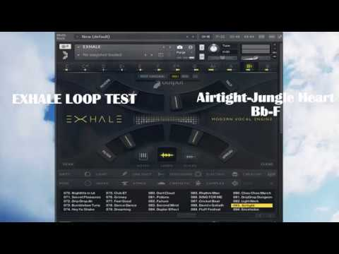 EXHALE TEST LOOP (Airtight → Jungle Heart / Bb → F)
