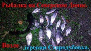 Рыбалка на Северском Донце.Возле деревни Стародубовка.Хороший отдых и улов.