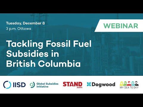 Webinar   Tackling Fossil Fuel Subsidies In British Columbia
